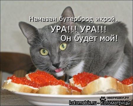 Котоматрица: Намазан бутерброд икрой. УРА!!! УРА!!!  Он будет мой! Намазан бутерброд икрой.