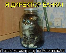 Котоматрица: Я ДИРЕКТОР БАНКА!