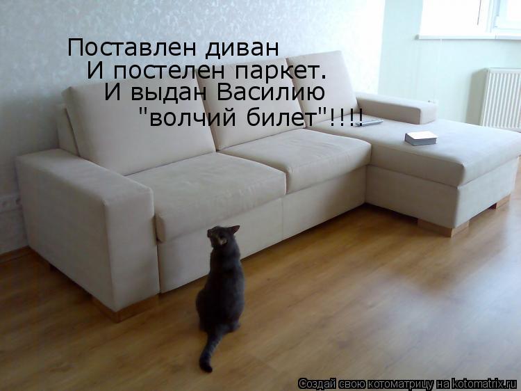 """Котоматрица: Поставлен диван  И постелен паркет. И выдан Василию """"волчий билет""""!!!!"""