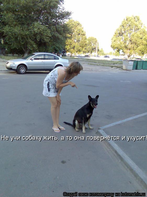 Котоматрица: Не учи собаку жить, а то она повернётся и укусит!