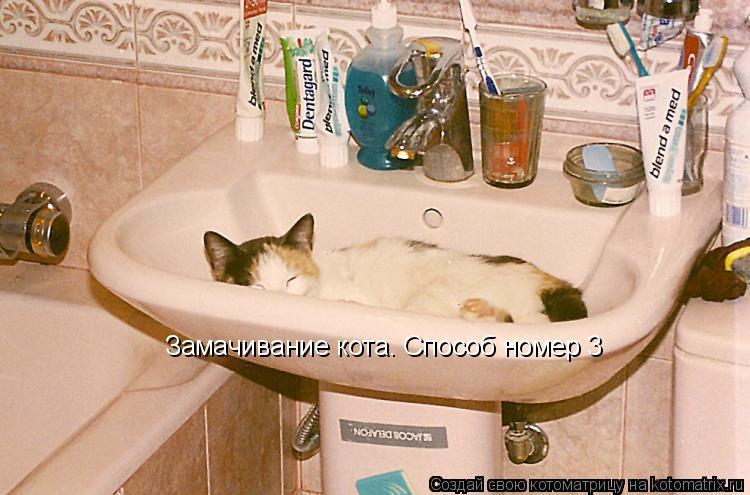 Котоматрица: Замачивание кота. Способ номер 3