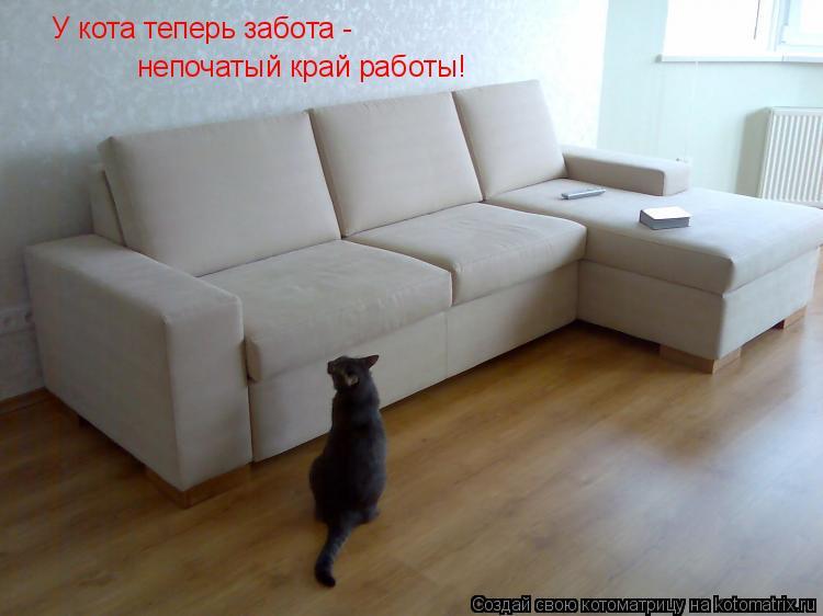 Котоматрица: У кота теперь забота -  непочатый край работы!