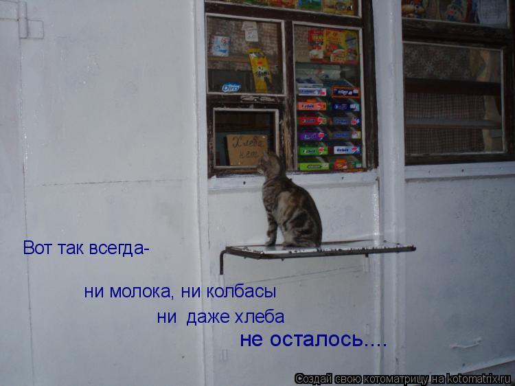 Котоматрица: Вот так всегда-   ни молока, ни колбасы  ни  даже хлеба  не осталось....