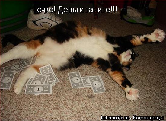 Котоматрица: очко! Деньги ганите!!!