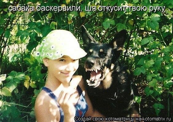 Котоматрица: сабака баскервили, шя откусит твою руку