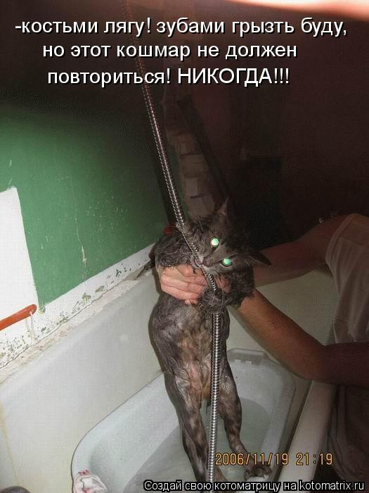 Котоматрица: -костьми лягу! зубами грызть буду,  но этот кошмар не должен  повториться! НИКОГДА!!!
