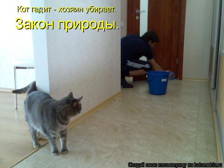 Котоматрица: Кот гадит - хозяин убирает. Закон природы.