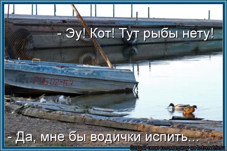 Котоматрица: - Да, мне бы водички испить... - Эу! Кот! Тут рыбы нету!