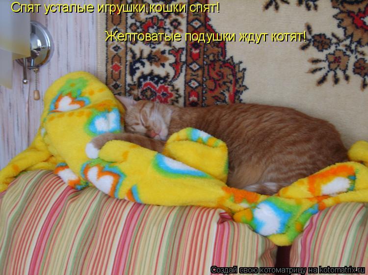 Котоматрица: Спят усталые игрушки,кошки спят! Желтоватые подушки ждут котят!