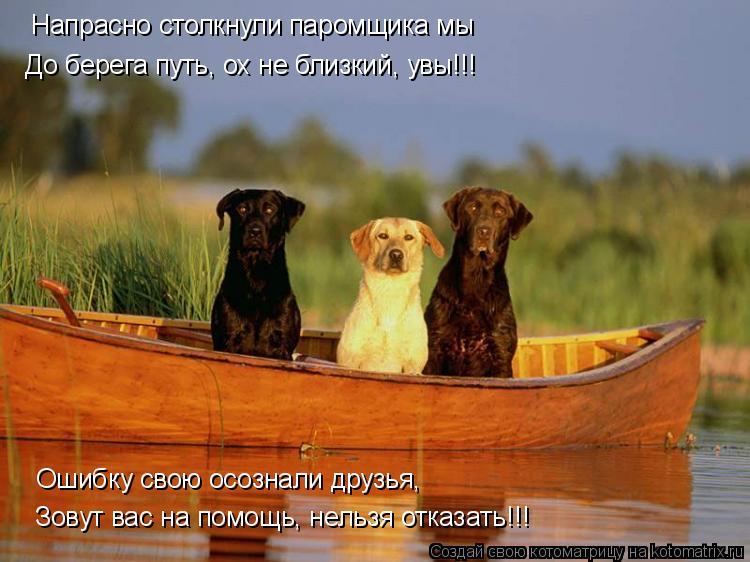 Котоматрица: Напрасно столкнули паромщика мы До берега путь, ох не близкий, увы!!! Ошибку свою осознали друзья, Зовут вас на помощь, нельзя отказать!!!