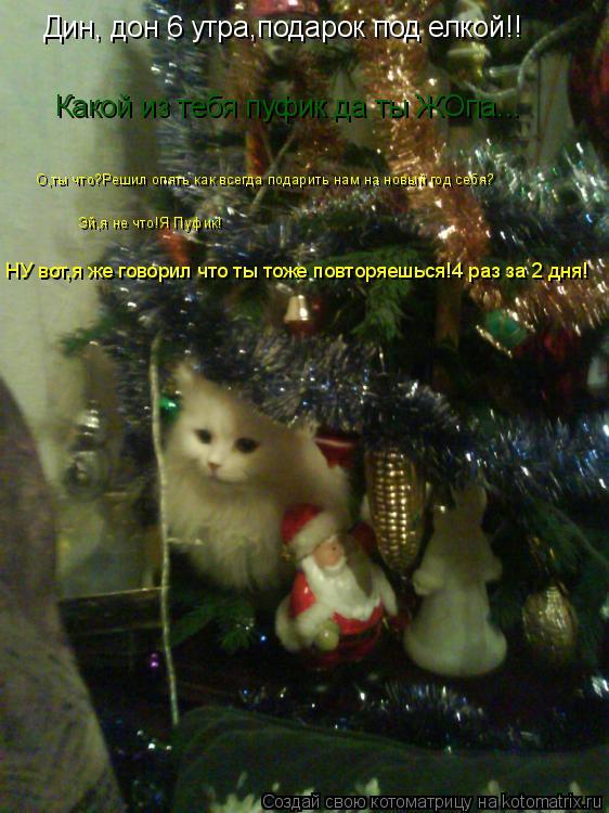 Котоматрица: Дин, дон 6 утра,подарок под елкой!! О,ты что?Решил опять как всегда подарить нам на новый год себя? Эй,я не что!Я Пуфик! Какой из тебя пуфик да ты