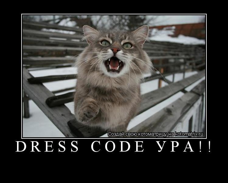 Котоматрица: Dress Code ура!!