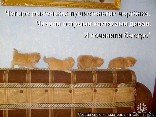 Котоматрица: Четыре рыженьких пушистеньких чертёнка, Чинили острыми кохтяхами диван. И починили быстро!