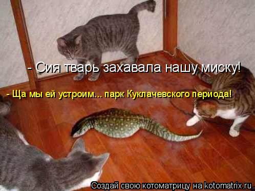 Котоматрица: - Сия тварь захавала нашу миску! - Ща мы ей устроим... парк Куклачевского периода!