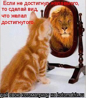 Котоматрица: Если не достигнул желаемого, то сделай вид, что желал достигнутого.