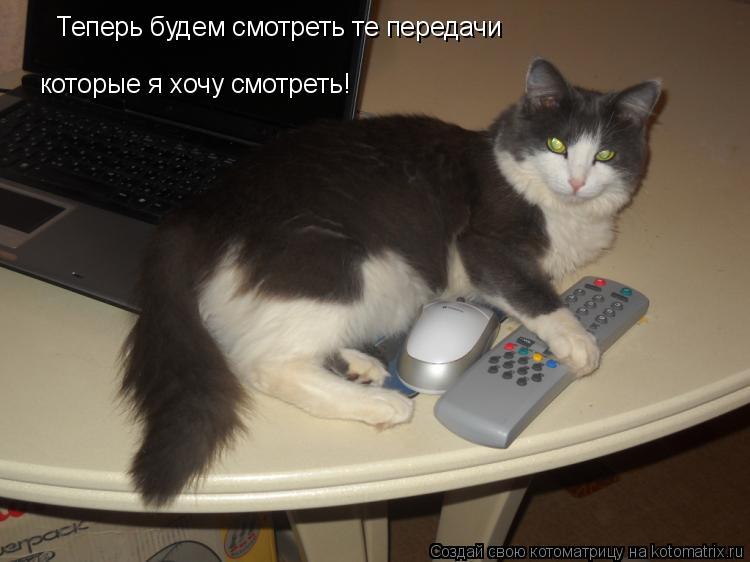 Котоматрица: Теперь будем смотреть те передачи которые я хочу смотреть!