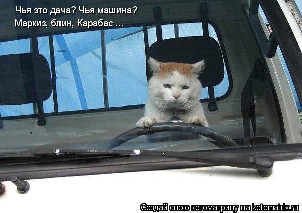 Котоматрица: Чья это дача? Чья машина?  Маркиз, блин, Карабас ...