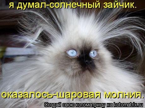 http://kotomatrix.ru/images/lolz/2009/09/16/359208.jpg