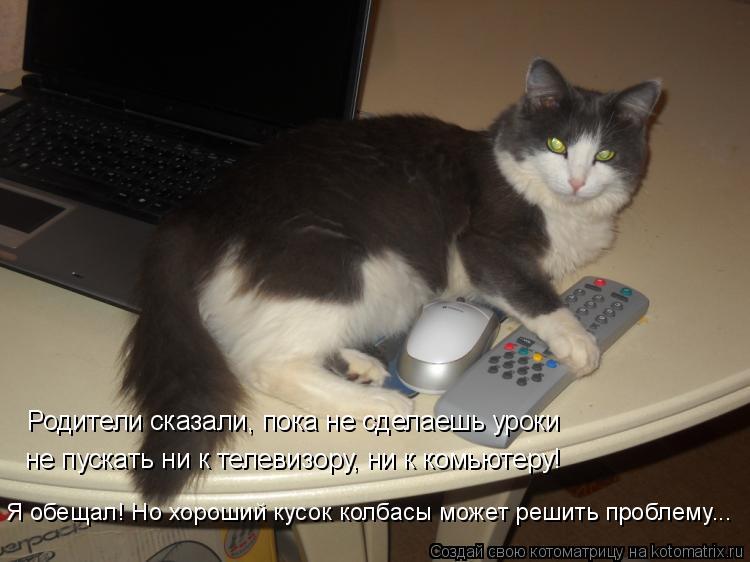 Котоматрица: Родители сказали, пока не сделаешь уроки  не пускать ни к телевизору, ни к комьютеру! Я обещал! Но хороший кусок колбасы может решить проблем