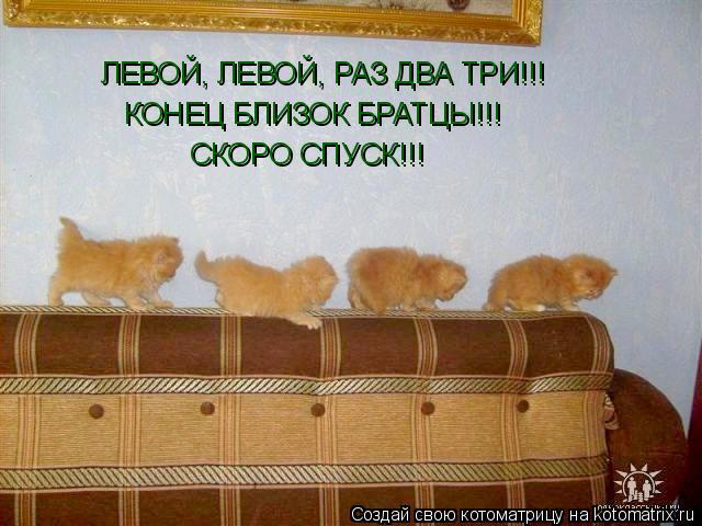 Котоматрица: ЛЕВОЙ, ЛЕВОЙ, РАЗ ДВА ТРИ!!! КОНЕЦ БЛИЗОК БРАТЦЫ!!! СКОРО СПУСК!!!