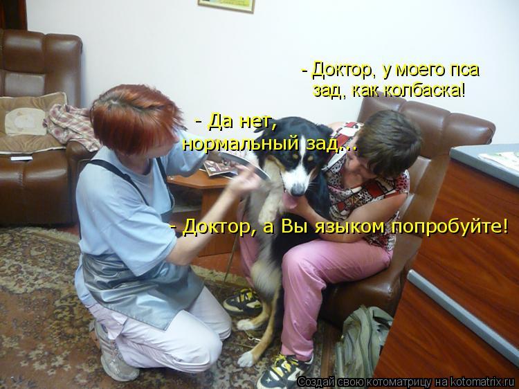 Котоматрица: - Доктор, у моего пса зад, как колбаска! - Да нет,  нормальный зад... - Доктор, а Вы языком попробуйте!