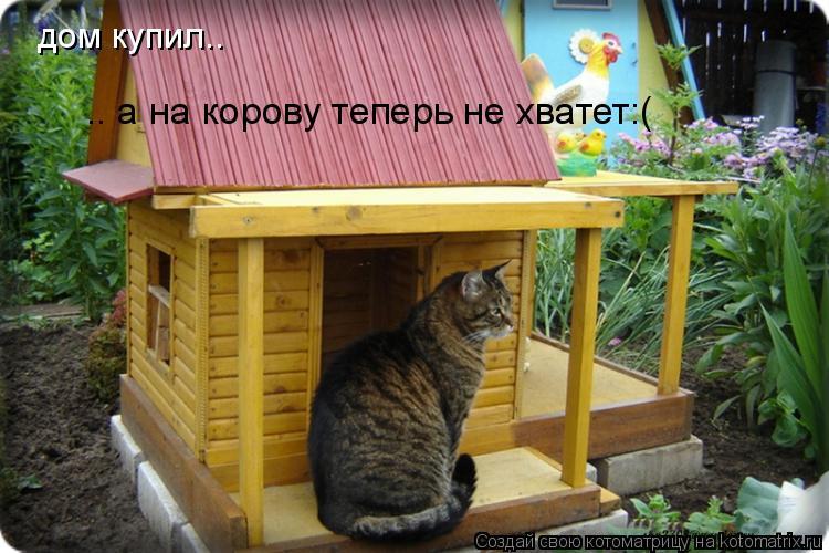 Котоматрица: дом купил.. .. а на корову теперь не хватет:(