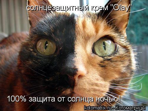 """Котоматрица: солнцезащитный крем """"Olay""""  100% защита от солнца ночью!"""