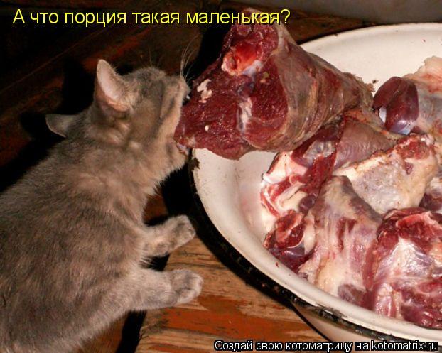 Котоматрица: А что порция такая маленькая?