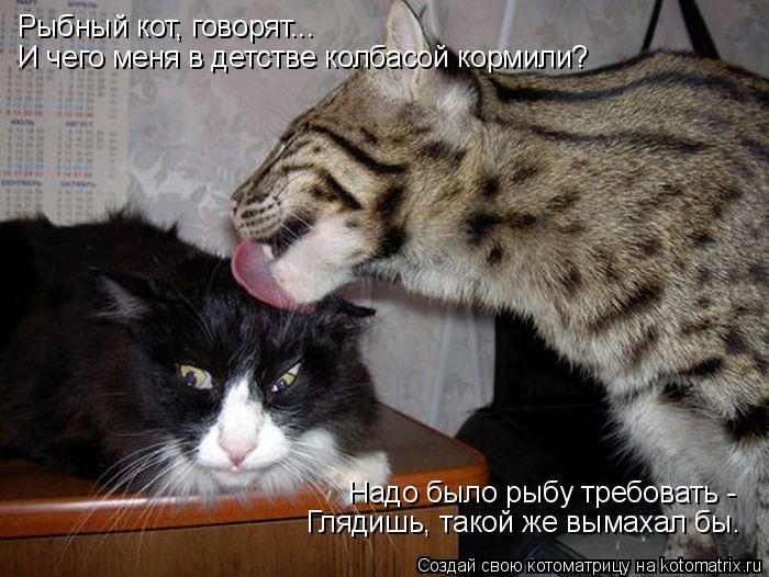 Котоматрица: Рыбный кот, говорят...  И чего меня в детстве колбасой кормили? Надо было рыбу требовать - Глядишь, такой же вымахал бы.