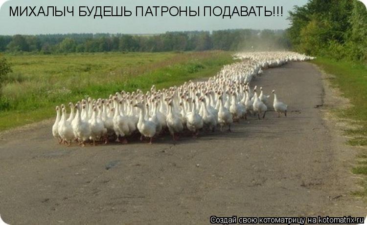 Котоматрица: МИХАЛЫЧ БУДЕШЬ ПАТРОНЫ ПОДАВАТЬ!!!