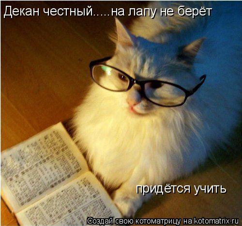 Котоматрица: Декан честный.....на лапу не берёт придётся учить