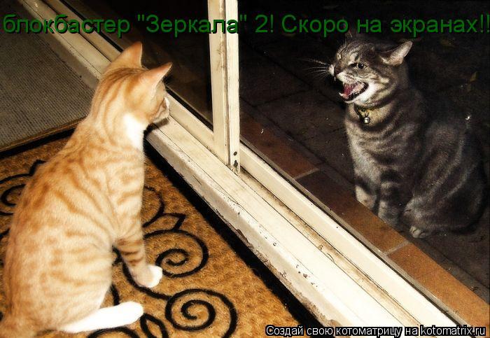 "Котоматрица: блокбастер ""Зеркала"" 2! Скоро на экранах!!!"