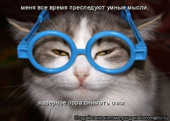 Котоматрица: меня все время преследуют умные мысли,  наверное пора сниматъ очки