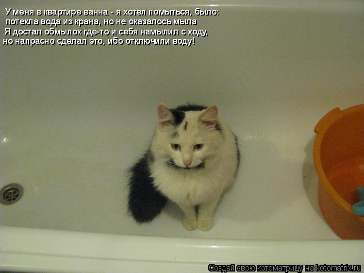 Котоматрица: У меня в квартире ванна - я хотел помыться, было:  потекла вода из крана, но не оказалось мыла Я достал обмылок где-то и себя намылил с ходу, но