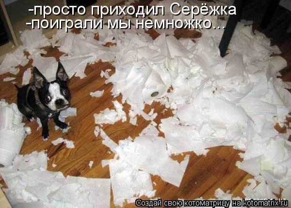 Котоматрица: -просто приходил Серёжка -поиграли мы немножко...