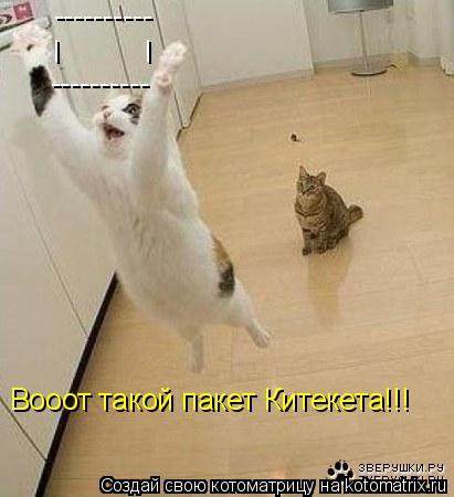 Котоматрица: ---------- ---------- I I Вооот такой пакет Китекета!!!