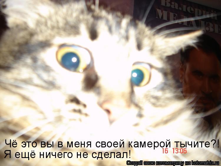 Котоматрица: Чё это вы в меня своей камерой тычите?! Я ещё ничего не сделал!