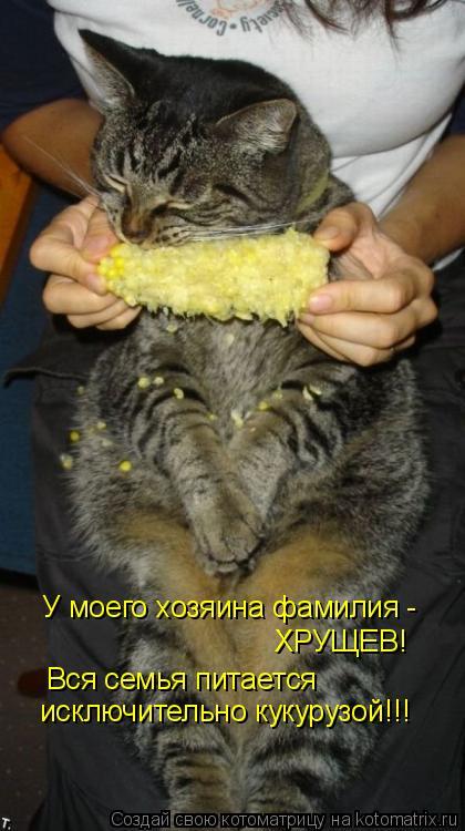 Котоматрица: У моего хозяина фамилия -  ХРУЩЕВ! Вся семья питается исключительно кукурузой!!!