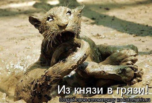 Котоматрица: Из князи в грязи!