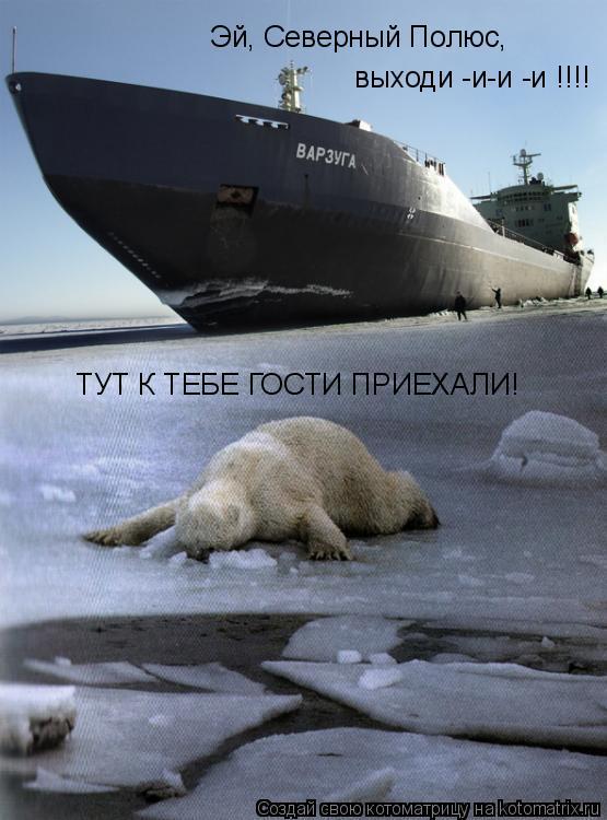 Котоматрица: Эй, Северный Полюс,   выходи -и-и -и !!!!  ТУТ К ТЕБЕ ГОСТИ ПРИЕХАЛИ!