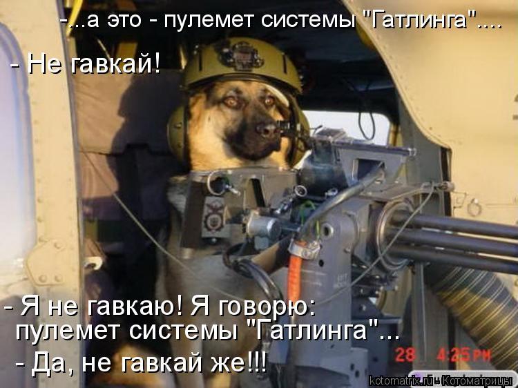 """Котоматрица: -...а это - пулемет системы """"Гатлинга"""".... - Да, не гавкай же!!! пулемет системы """"Гатлинга""""... - Я не гавкаю! Я говорю:  - Не гавкай!"""