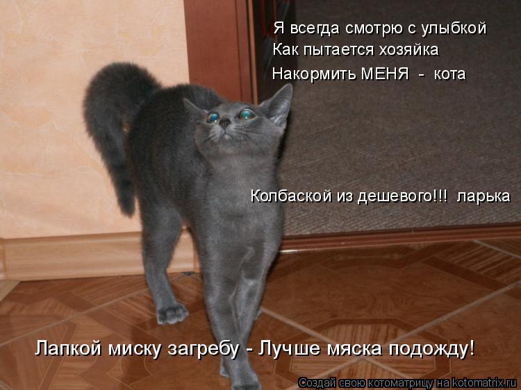 Котоматрица: Я всегда смотрю с улыбкой Как пытается хозяйка Накормить МЕНЯ  -  кота  Колбаской из дешевого!!!  ларька Лапкой миску загребу - Лучше мяска под