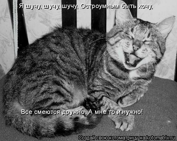 Котоматрица: Я шучу, шучу, шучу, Остроумным быть хочу, Все смеются дружно, А мне то и нужно!