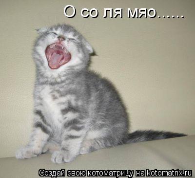 Котоматрица: О со ля мяо......