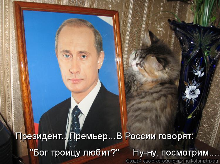 """Котоматрица: Президент...Премьер...В России говорят: """"Бог троицу любит?""""     Ну-ну, посмотрим....."""