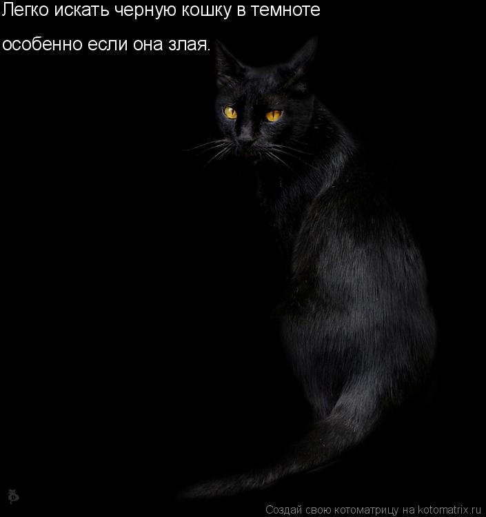 Котоматрица: Легко искать черную кошку в темноте особенно если она злая.