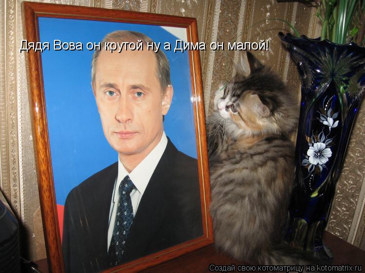 Котоматрица: Дядя Вова он крутой ну а Дима он малой!