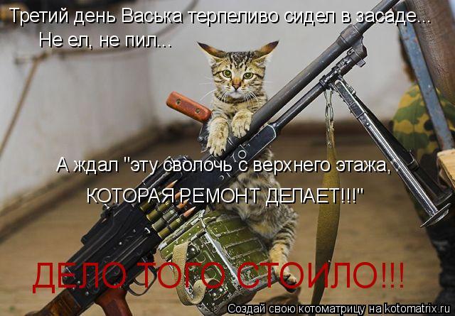 """Котоматрица: Третий день Васька терпеливо сидел в засаде... Не ел, не пил... А ждал """"эту сволочь с верхнего этажа, КОТОРАЯ РЕМОНТ ДЕЛАЕТ!!!"""" ДЕЛО ТОГО СТОИЛО!!!"""
