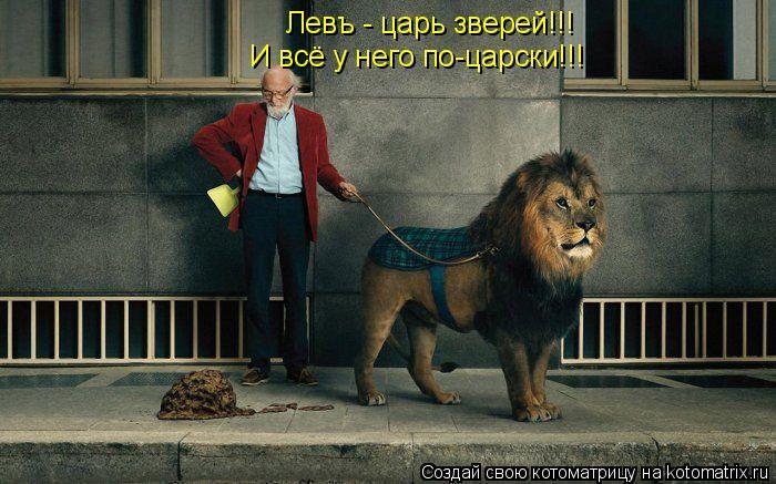 Котоматрица: Левъ - царь зверей!!! И всё у него по-царски!!!