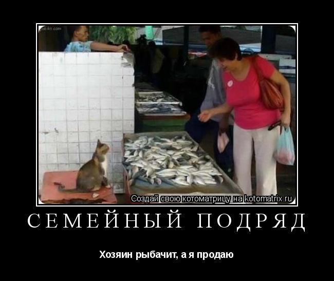 Котоматрица: Семейный подряд Хозяин рыбачит, а я продаю